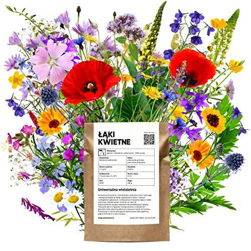 Blumenwiese Mehrjährig Wildpflanzen...