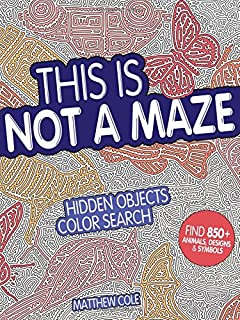 This Is Not a Maze: Hidden Objects Color Search