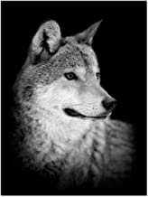 LevvArts - Wolf Canvas Print,Portrait of Beautiful Wolf in The Dark Wall Art Stretched Wood Frame,Black and White Animal Canvas Pictures for Living Room Decoration,Ready to Hang