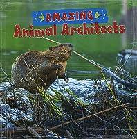 Amazing Animal Architects