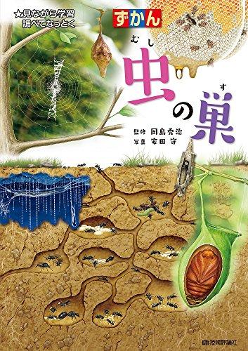 虫の巣 (ずかん)