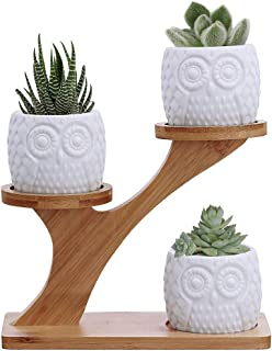 3pcs Owl Succulent Pots with 3 Tier Bamboo Saucers Stand Holder – White Modern..