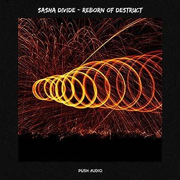 Reborn of Destruct