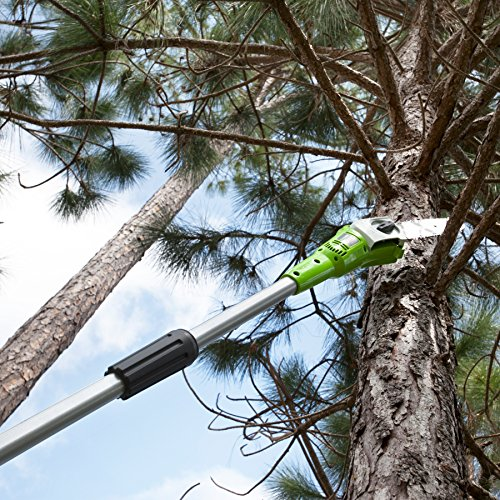Greenworks Cordless Pole Saw