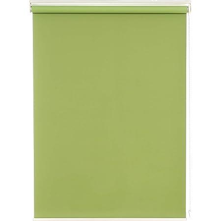 Deconovo ロールスクリーン 1級遮光 断熱 遮熱 防音 防寒 UVカット 13サイズ 表裏同色 幅45cm 丈135cm グリーン