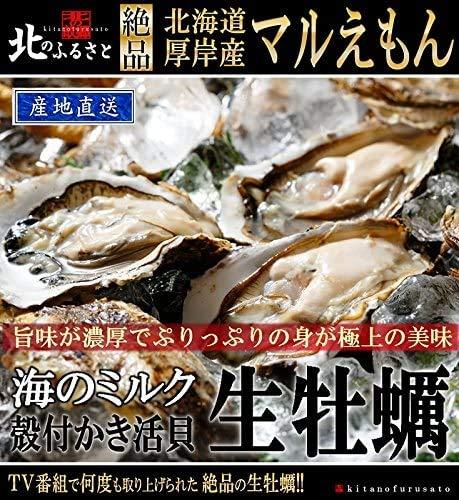 北海道 厚岸産 マルえもん 生 牡蠣 殻付き 3Lサイズ × 20個 カキナイフ 軍手付 産地直送 150g以上/個 48時間オゾン・紫外線殺菌処理を施してあるので、安心・安全の品質です。一年中生で食べられるクオリティを保持しています。 厚岸 牡蠣 かき