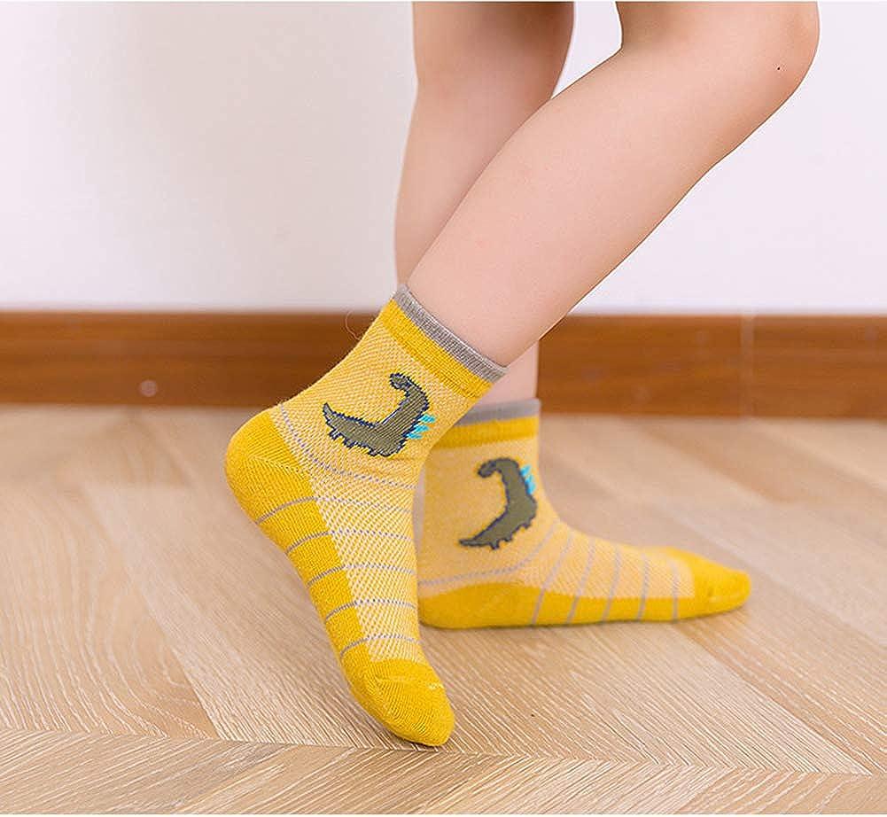 CHUNG Boys Cotton Socks 5/10 Pack Low Cut Ankle Dinosaur Mesh 2-9Y Thin Light Weight Back School