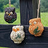 Park Seed Holiday Hoots Seed Ornaments, Birdseed Ornaments, Christmas Gift