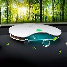 Amazon.es: ionizador coche