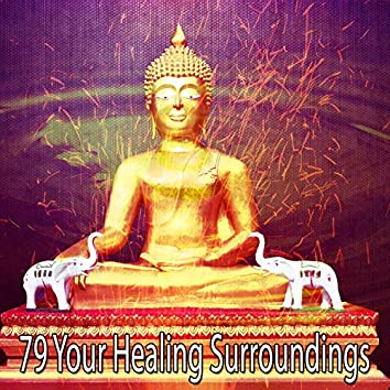 79 Your Healing Surroundings