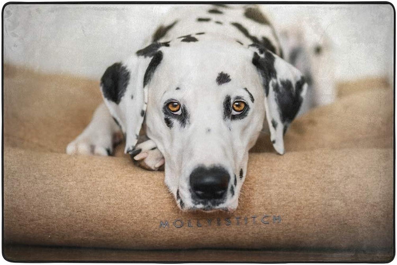 Dalmatian Dog Dormat Decor Indoor Outdoor Welcome Door Anti Skid Mat Rug for Home Office Bedroom