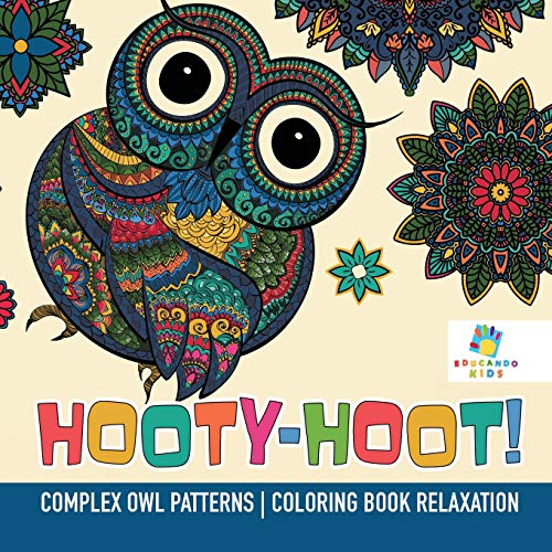 Hooty Owl Turquoise Tablets LCD Screen Cleaner Kindles Laptops etc perfect for Ipads