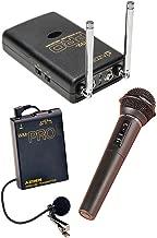 azden dual channel wireless microphone system