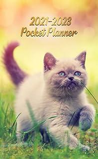 2021-2023 Pocket Planner: Adorable Playful Kitten Three Year (36 Months) Monthly Schedule Agenda - Calendar & Organizer wi...