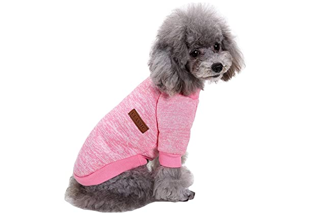 Best sweaters for dog