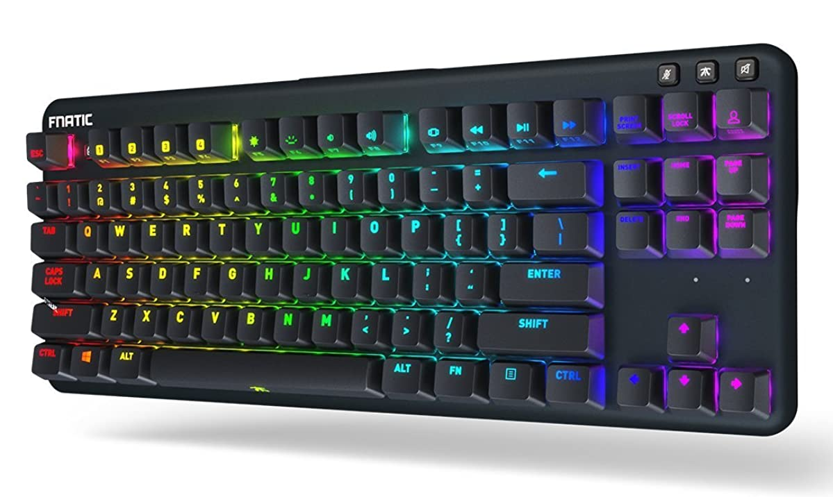 Fnatic miniSTREAK Pro Gaming Mechanical Tenkeyless Esports Keyboard (Cherry MX Silent Red Switches, Multi-Color RGB Lighting, Ergonomic Wrist Rest, Programmable) US-Layout