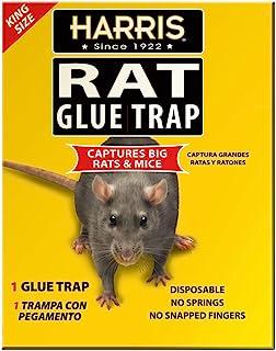 Harris King Size Rat & Mouse Glue Trap