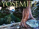 Yosemite National Park 2021 Wall Calendar