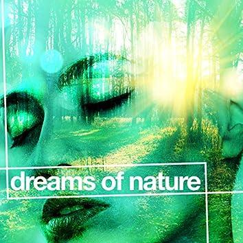 Dreams of Nature