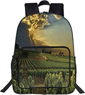 """Winery Decor School Bag,Sunset over the Vineyards of the South of France Sunbeams Cloudscape Picture Print For Teens Girls Boys,11.8""""L x6.3""""Wx15.7""""H"""