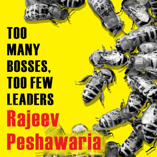 Too Many Bosses, Too Few Leaders audiobook cover art