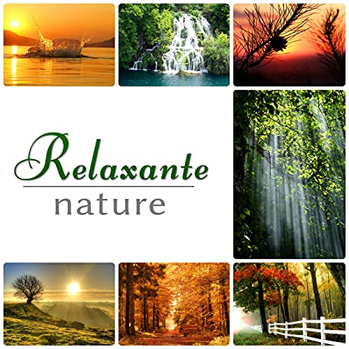 Relaxation – sons...