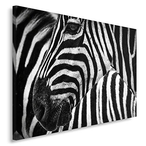 Feeby. Cuadro en Lienzo - 1 Parte - 80x120 cm, Imagen impresión Pintura decoración Cuadros de una Pieza, Cebra, Naturaleza, Blanco Y Negro