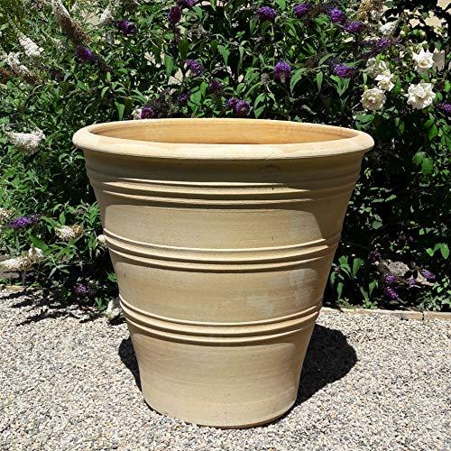 Kreta-Keramik | absolut frostfest und witterungsbeständig | hochwertiger Pflanzkübel aus echter Terracotta | 70 cm | winterfestes Pflanzgefäß für Blumen Buchs Garten Terrasse Deko, Yucca 2