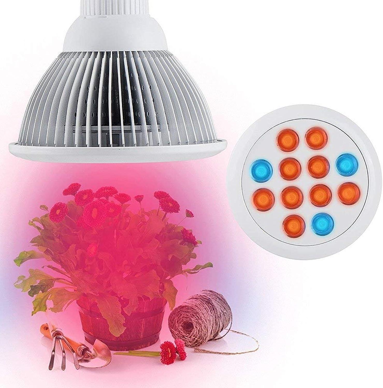 WLM 36W Vollspektrum LED Wachsen Licht für Pflanzen Blaumen Samen Veg Innenwachstum Lampen