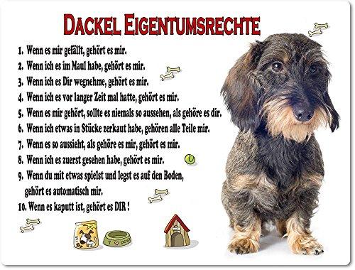 Merchandise for Fans Blechschild/Warnschild/Türschild - Aluminium - 15x20cm Eigentumsrechte Motiv: Dackel Rauhaardackel sitzend - 07