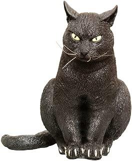 black cat prop