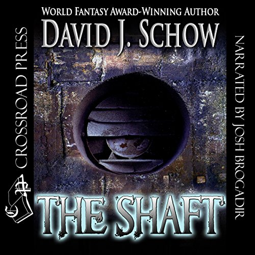 The Shaft cover art