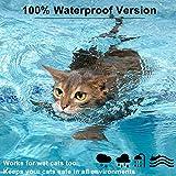 Zoom IMG-1 collare antipulci per gatti 100