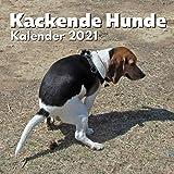 Kackende Hunde Kalender 2021: Lustige Hunde Kalender   Hundeliebhaber Geschenke für Frauen Männer Menschen Kinder Geburtstag Weihnachten