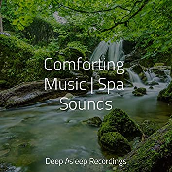 Comforting Music   Spa Sounds