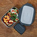 Femora Stainless Steel Lunch Pack for Kids Office & School Use