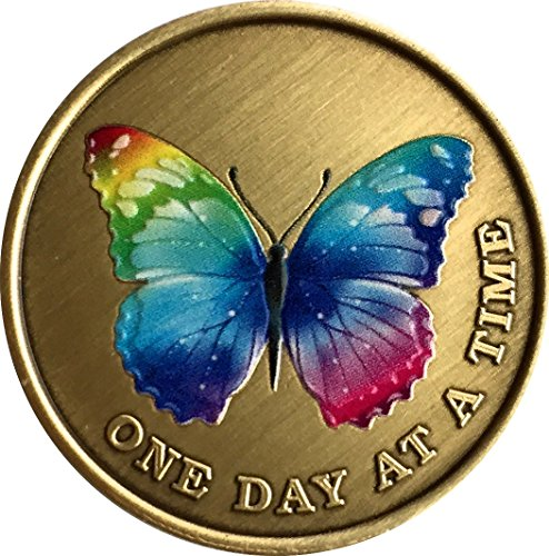 Color Rainbow Butterfly One Day at A Time Medallion Serenity Prayer Bronze Chip