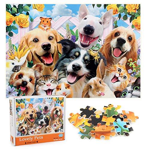 Sunshine smile Klassische Puzzles,1000 Teile Regenbogen Puzzle,Erwachsenenpuzzle,Puzzle Kreative Erwachsene,Legespiel Puzzle,Puzzle Pädagogisches,Puzzle Stressfreisetzung Spielzeug (G)