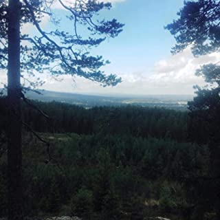 Songs About a Landscape