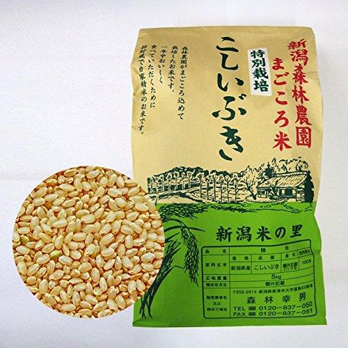 新米 新潟産こしいぶき 5kg 玄米 【送料無料】(ほぼ 無農薬) 食味Aランク 一等級
