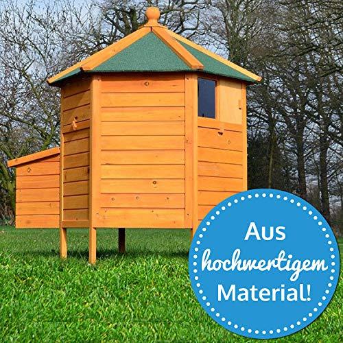 """ZooPrimus Hühner-Stall Nr 28 Geflügel-Voliere """"HÜHNER-PAVILLON"""" Enten-Haus für Außenbereich (Geeignet für Kleintiere: Hühner, Geflügel, Vögel, Enten usw.) - 2"""
