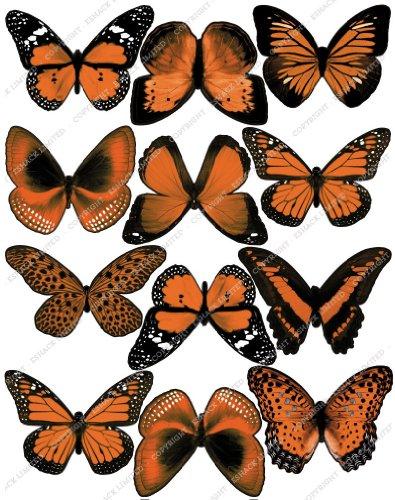 Cakeshop 12 x Vorgeschnittene Orange Essbare Schmetterlingskuchen Topper (Tortenaufleger, Bedruckte Oblaten, Oblatenaufleger)