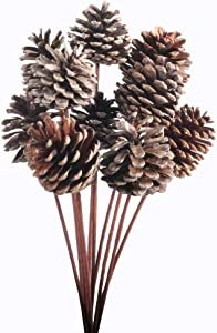 JAROWN 10 pcs Pine Cones Dried Plants Iron Stem Artificial Branches Fall Winter Christmas Home Vase Bowl Filler Display Crafts Decor