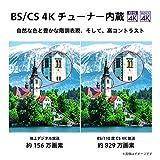 東芝 43V型 液晶テレビ レグザ 43M530X 4Kチューナー内蔵 外付けHDD W録画対応 (2019年モデル)