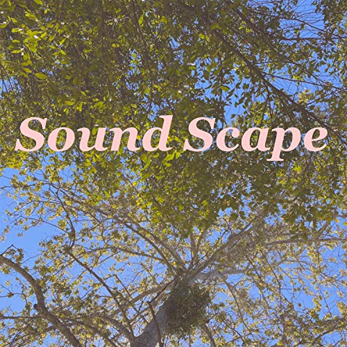 Sound Scape