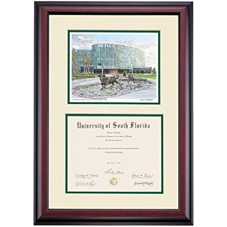 University of South Florida Diploma Frame Campus Picture USF Diploma Frames Graduation Gift Degree Plaque Holder Case Certificate Framing