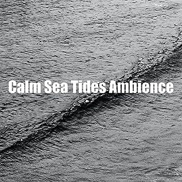 Calm Sea Tides Ambience