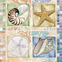 CoasterStone AS2455 Absorbent Coasters, 4-1/4-Inch,Mosaic Shells, Set of 4