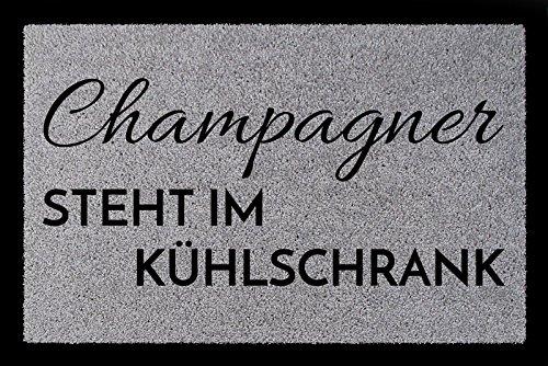 Interluxe TÜRMATTE Fußmatte Champagner Steht IM KÜHLSCHRANK Wohnung Eingang Viele Farben Hellgrau