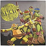 Teenage Mutant Ninja Turtles Cross Hatching Fabric Shower Curtain 72 x 72